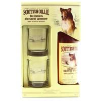 Виски Шотландии Scottish Collie 3 yo / Скоттиш Колли 3 ео, 0.7 л (под.уп. + 2 бокала) [5010327909271]