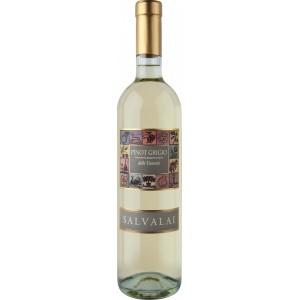 Вино Италии Salvalai Pinot Grigio Delle Venezie / Салвалаи Пино Гриджо Делле Веньезе, Бел, Сух, 0.75 л [8005276305707]